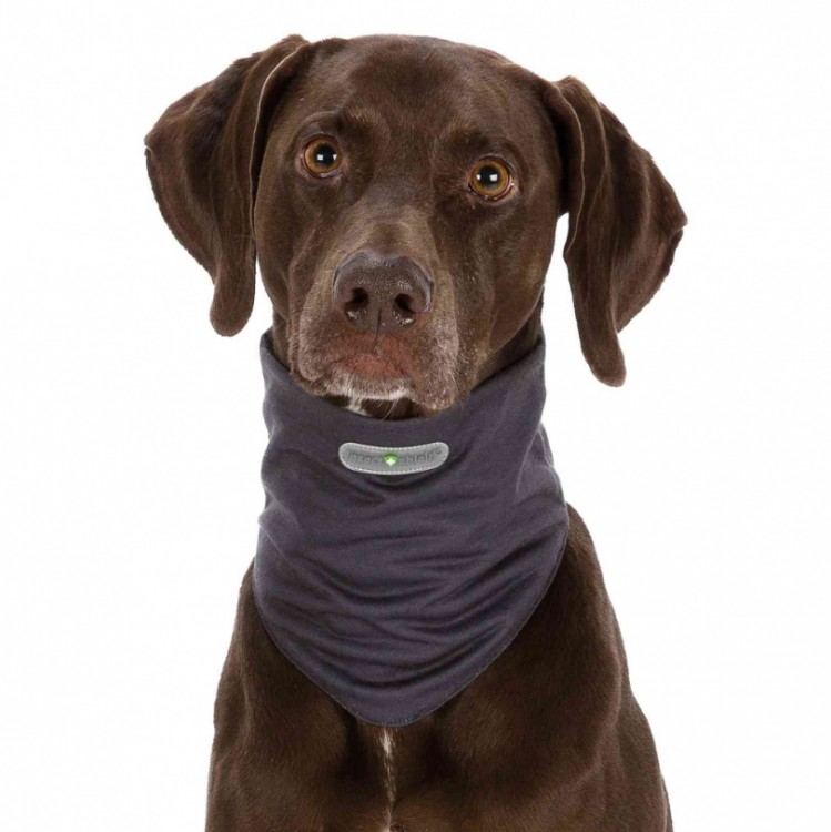 TRIXIE - Insect Shield® Dog Loop - grau