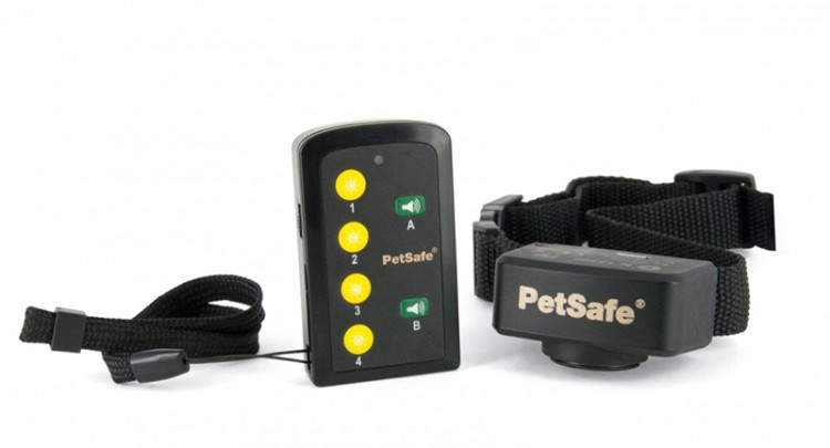 PetSafe - Basis Ferntrainer 70m PDT45