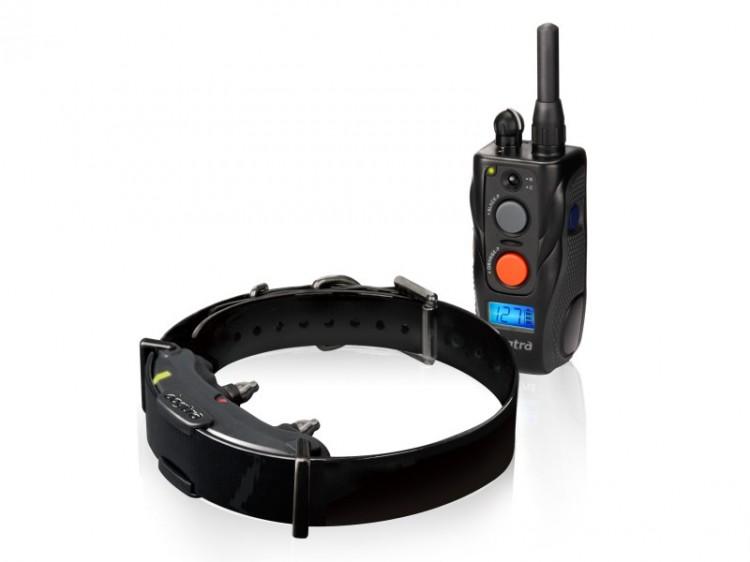 Dogtra - ARC 800, Ferntrainer