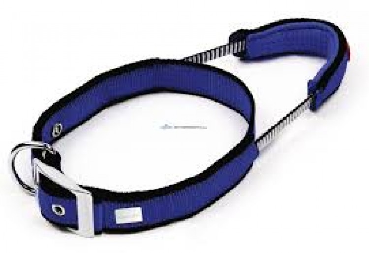 DOG CONTROL SYSTEM Nylon Halsband - rot
